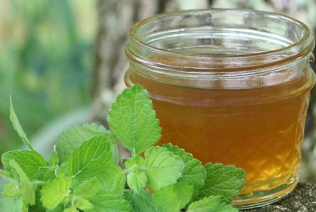 honey mint toner for skin