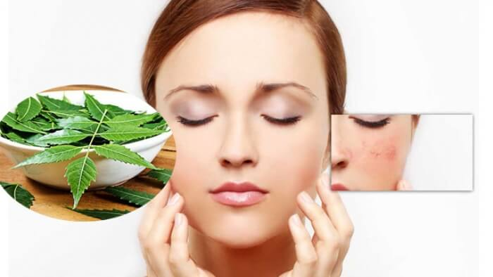 benefits of neem powder