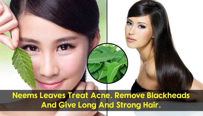 neem powder for hair and skin
