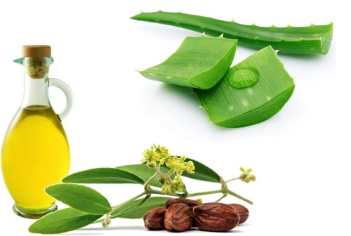 Aloe-Vera-and-jojoba-oil