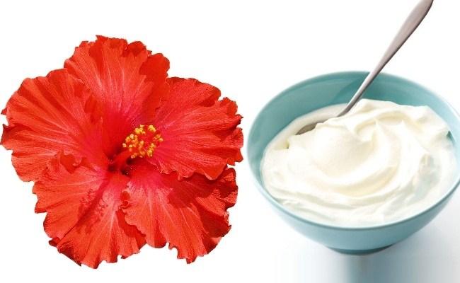 yogurt-and-hibiscus