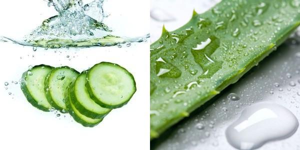 Aloe Vera and Cucumber