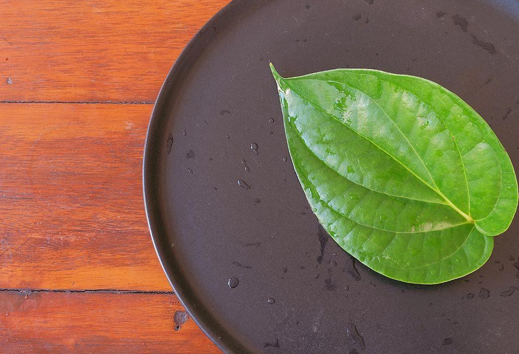 betel leaf for hair growth