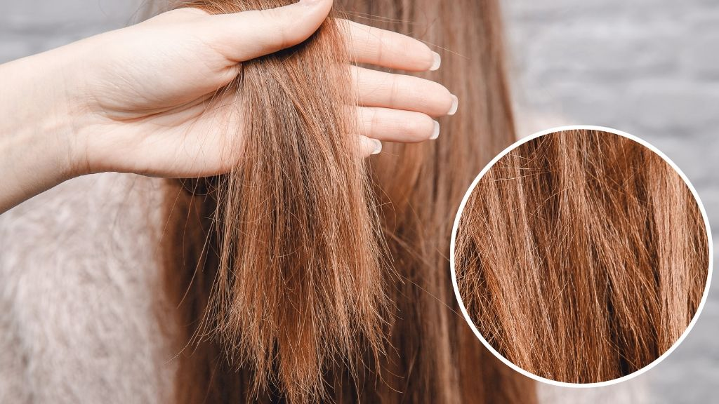 braids for hair growth